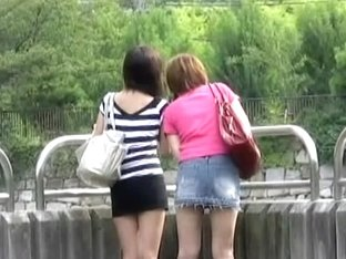 Two long-legged female friends having sharking meeting with some chap