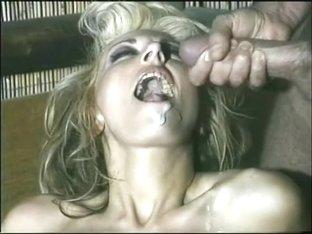 Porn Star Legends - Nikki Sinn