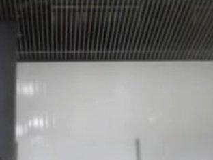 Hidden web camera in a ladies washroom caught some sexy twats