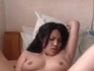 Juvenile immature Filipina Cam