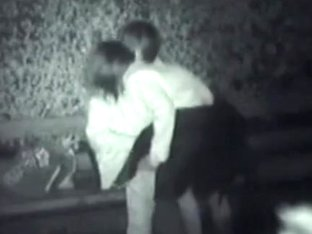Couple caught having sex in the park at night