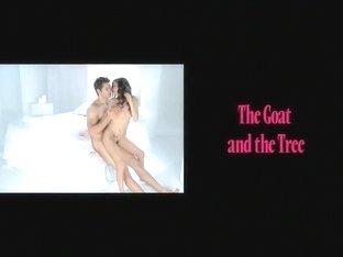 Best pornstar Misty Stone in horny ebony, big tits porn movie