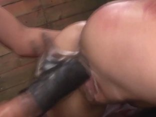 Tied lesbo ### fingered