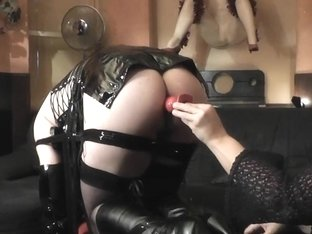 T-Gal Trained and Drilled By Married Pair
