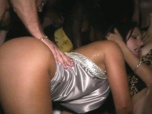 Nasty Pornstar party