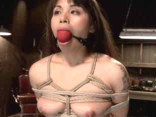 Hot Babe Tormented in Hard Bondage