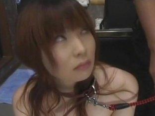 Asian babe suck in bondage