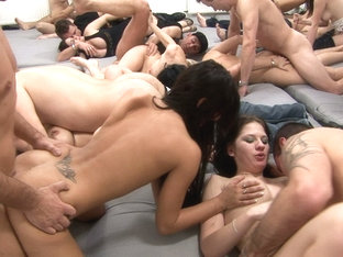 have a pleasure this crazy fucking orgy