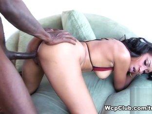 Best pornstars in Fabulous Black and Ebony, Big Tits xxx clip