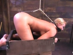 Welcome Mellanie to Hogtied to be fucked!