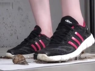 snail crush sneakers