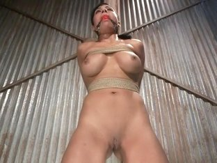 Slut Interrogation