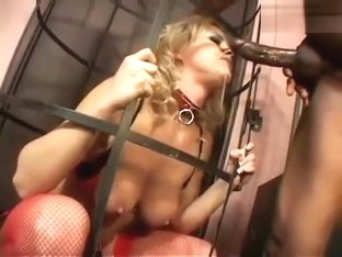 Prisoner Bree Olson Shows Why She Should Be Set Free1.wmv